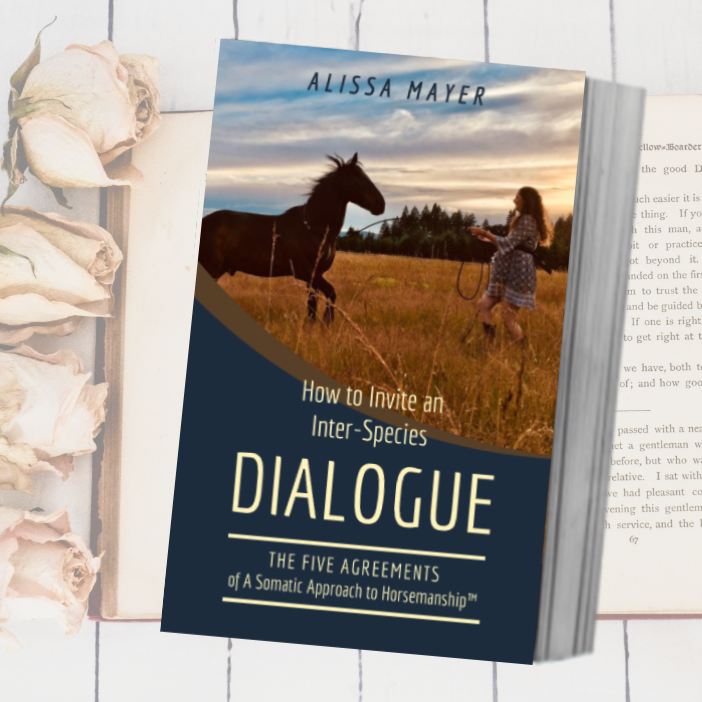 Book cover - How to Invite an Inter-Species Dialogue by Alissa Mayer