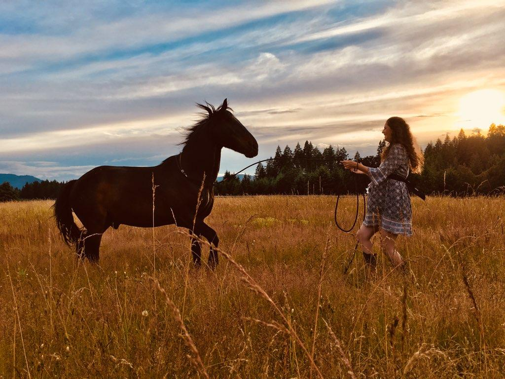 Beyond Natural Horsemanship - (book) How to Invite an Interspecies Dialogue, by Alissa Mayer
