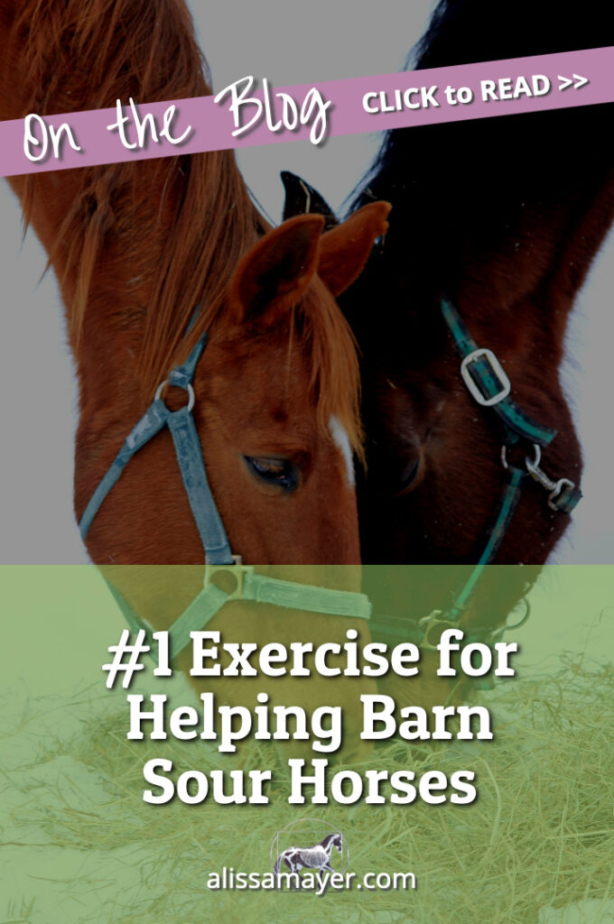 #1 Exercise for Helping Barn Sour Horses