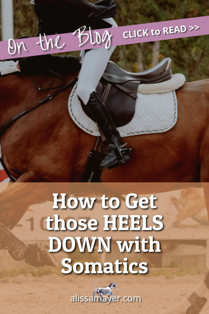 How to Get your Heels Down when you ride a horse