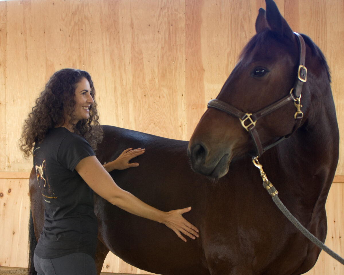 Relax your horses back and rib cage with Somatics